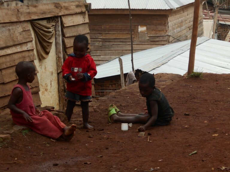 Repubblica Democratica del Congo 8